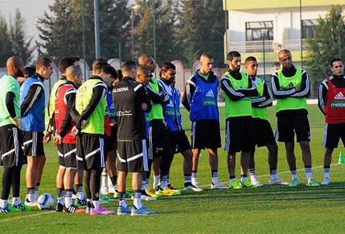 منتخب الجزائر يكتفي بمعسكر داخلي قبل مشاركته في كأس أمم إفريقيا بالغابون