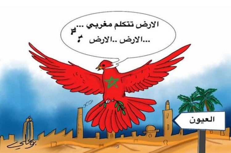 وزير رياضة مصر يعتذر رسمياً للمغرب بسبب بتر خريطة الصحراء